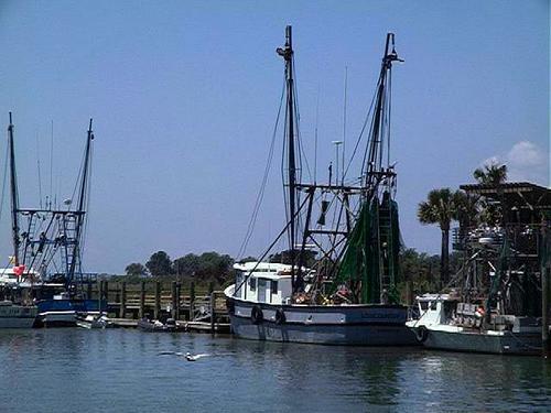 Shrimpboats1