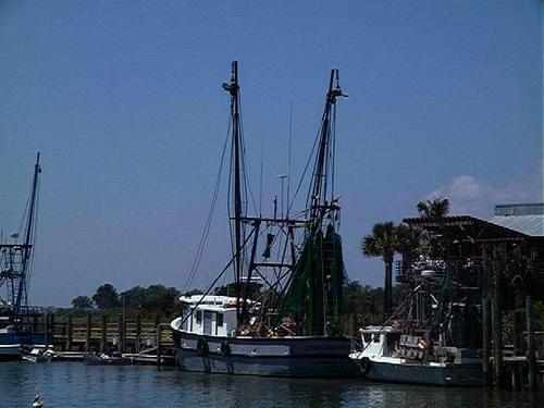 Shrimpboats2